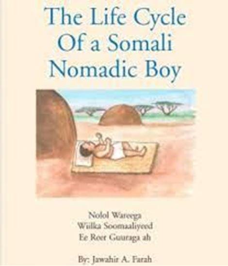 Picture of The Life Cyce Of a Somali Nodamic Boy